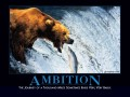 2. Ambition