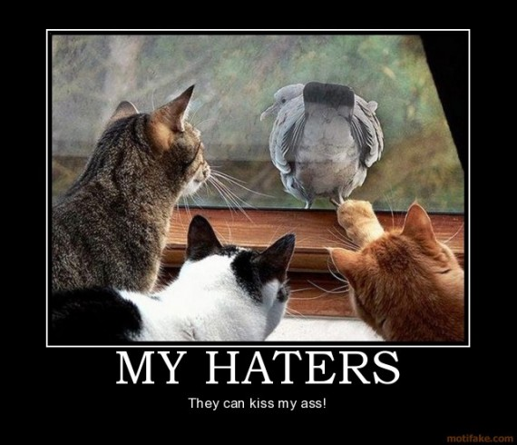 7. My Haters