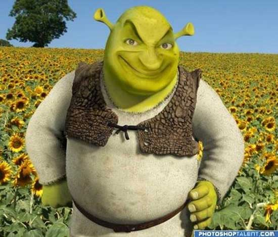 Mr. Bean as loving Shrek-02