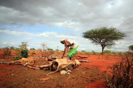drought east africa 4