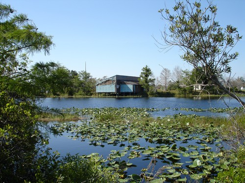 6. The Everglades USA