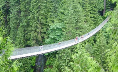 Capilano Suspension Bridge in Northern Vancouver, Canada-4