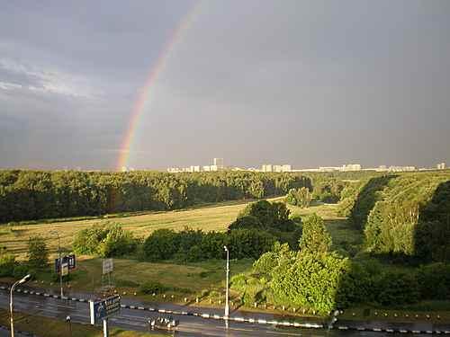 Bitsevsky Park, Moscow
