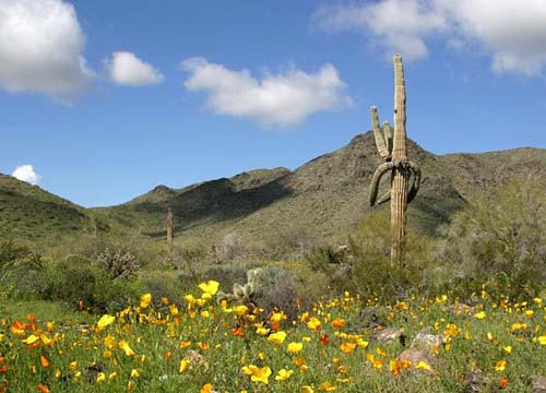 South Mountain Park, Arizona